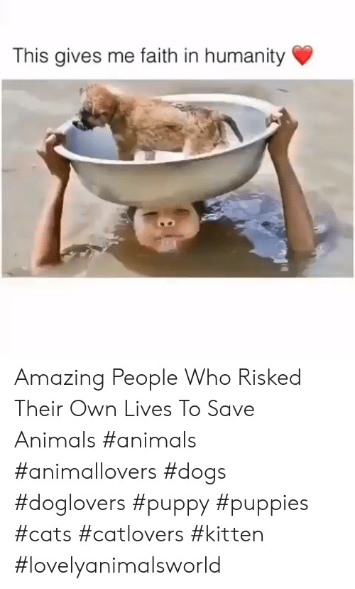 Animals, Cats, and Dogs: This gives me faith in humanity Amazing People Who Risked Their Own Lives To Save Animals #animals #animallovers #dogs #doglovers #puppy #puppies #cats #catlovers #kitten #lovelyanimalsworld