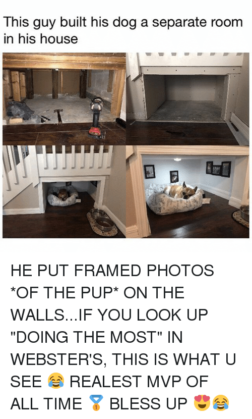 "Bless Up, Memes, and House: This guy built his dog a separate room  in his house  参 HE PUT FRAMED PHOTOS *OF THE PUP* ON THE WALLS...IF YOU LOOK UP ""DOING THE MOST"" IN WEBSTER'S, THIS IS WHAT U SEE 😂 REALEST MVP OF ALL TIME 🥇 BLESS UP 😍😂"