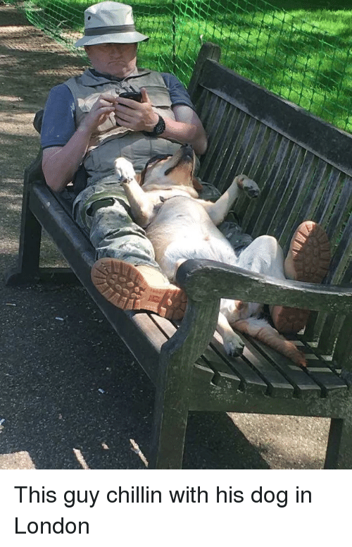 London, Dog, and This: This guy chillin with his dog in London