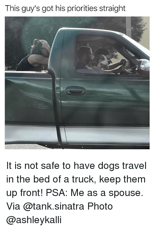 tanked: This guy's got his priorities straight It is not safe to have dogs travel in the bed of a truck, keep them up front! PSA: Me as a spouse. Via @tank.sinatra Photo @ashleykalli
