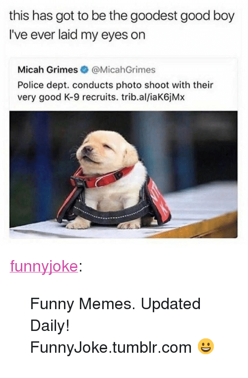 """Funny, Memes, and Police: this has got to be the goodest good boy  I've ever laid my eyes on  Micah Grimes @MicahGrimes  Police dept. conducts photo shoot with their  very good K-9 recruits. trib.al/iaK6jMx <p><a href=""""http://funny.in/post/170983628878/funny-memes-updated-daily-funnyjoketumblrcom"""" class=""""tumblr_blog"""">funnyjoke</a>:</p>  <blockquote><p>Funny Memes. Updated Daily! ⇢ FunnyJoke.tumblr.com 😀</p></blockquote>"""