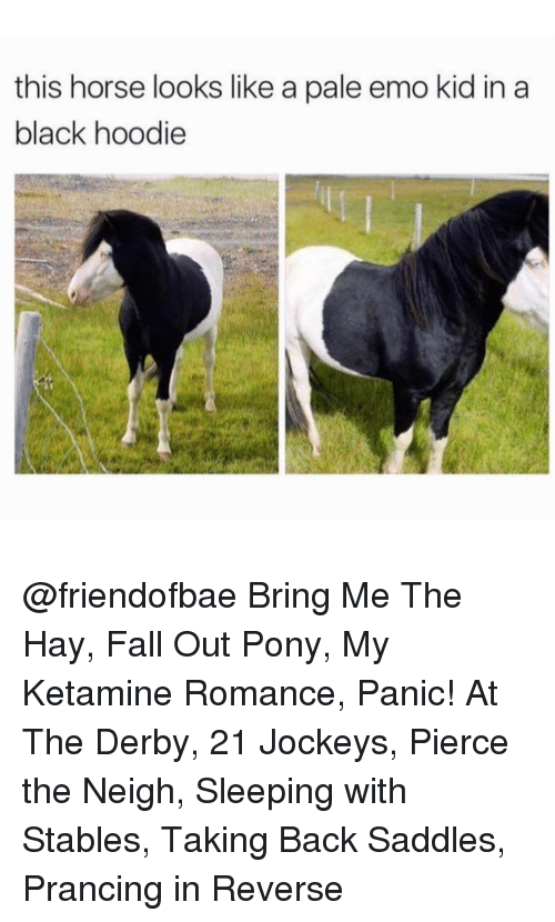 saddles: this horse looks like a pale emo kid in a  black hoodie @friendofbae Bring Me The Hay, Fall Out Pony, My Ketamine Romance, Panic! At The Derby, 21 Jockeys, Pierce the Neigh, Sleeping with Stables, Taking Back Saddles, Prancing in Reverse