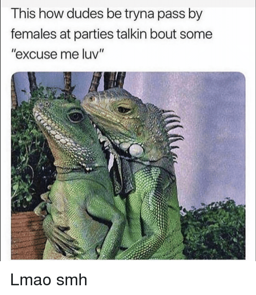 """Funny, Lmao, and Smh: This how dudes be tryna pass by  females at parties talkin bout some  """"excuse me luv"""" Lmao smh"""