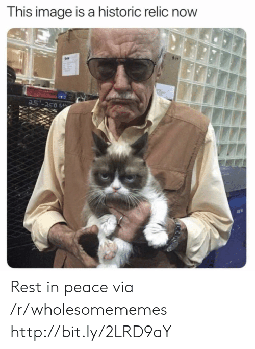 Http, Image, and Peace: This image is a historic relic now  25'-250 Rest in peace via /r/wholesomememes http://bit.ly/2LRD9aY