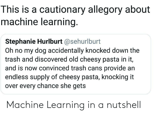 Trash: This is a cautionary allegory about  machine learning.  Stephanie Hurlburt @sehurlburt  Oh no my dog accidentally knocked down the  trash and discovered old cheesy pasta in it,  and is now convinced trash cans provide an  endless supply of cheesy pasta, knocking it  over every chance she gets Machine Learning in a nutshell