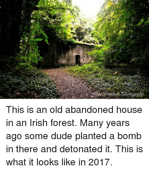 Dude, Irish, and House: This is an old abandoned house in an Irish forest. Many years ago some dude planted a bomb in there and detonated it. This is what it looks like in 2017.