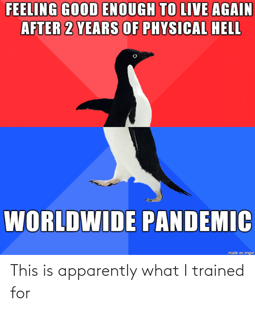 What I: This is apparently what I trained for