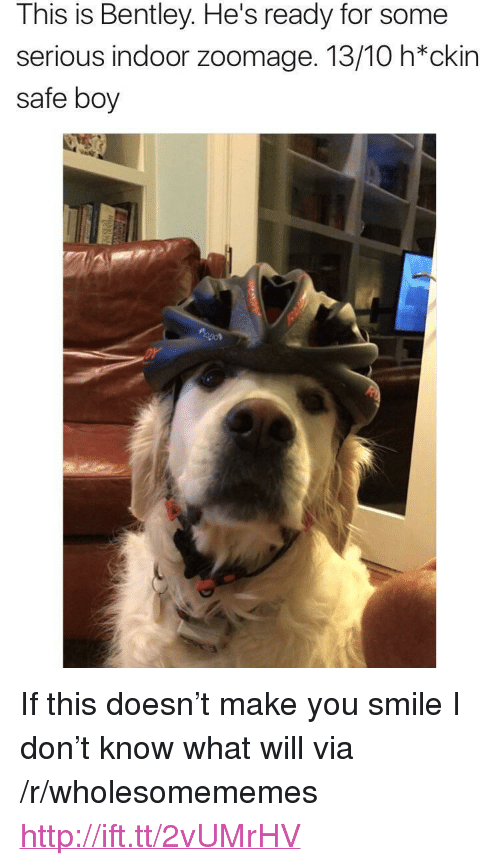 "Hes Ready: This is Bentley. He's ready for some  serious indoor zoomage. 13/10 h*ckin  safe boy <p>If this doesn&rsquo;t make you smile I don&rsquo;t know what will via /r/wholesomememes <a href=""http://ift.tt/2vUMrHV"">http://ift.tt/2vUMrHV</a></p>"