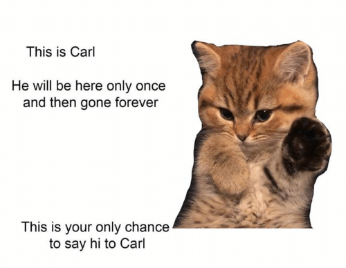 Forever, Once, and Gone: This is Carl  He will be here only once  and then gone forever  This is your only chance  to say hi to Carl