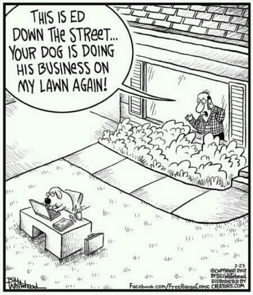 Facebook, Business, and facebook.com: THIS IS ED  DOWN THe STReeT.  YOUR DOG IS DOING  HIS BUSINess ON  MY LAWN AGAIN!  It  14  เน่.,  1e  ts i  1b ,  2-23  Me  Facebook.com/FrecRangeComic CREATORS.COM