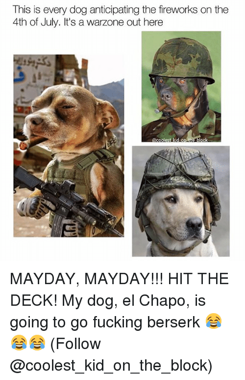Mayday: This is every dog anticipating the fireworks on the  4th of July. It's a  warzone out here  C E MAYDAY, MAYDAY!!! HIT THE DECK! My dog, el Chapo, is going to go fucking berserk 😂😂😂 (Follow @coolest_kid_on_the_block)