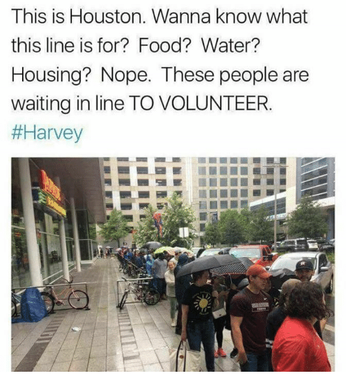 Noping: This is Houston. Wanna know what  this line is for? Food? Water?  Housing? Nope. These people are  waiting in line TO VOLUNTEER.