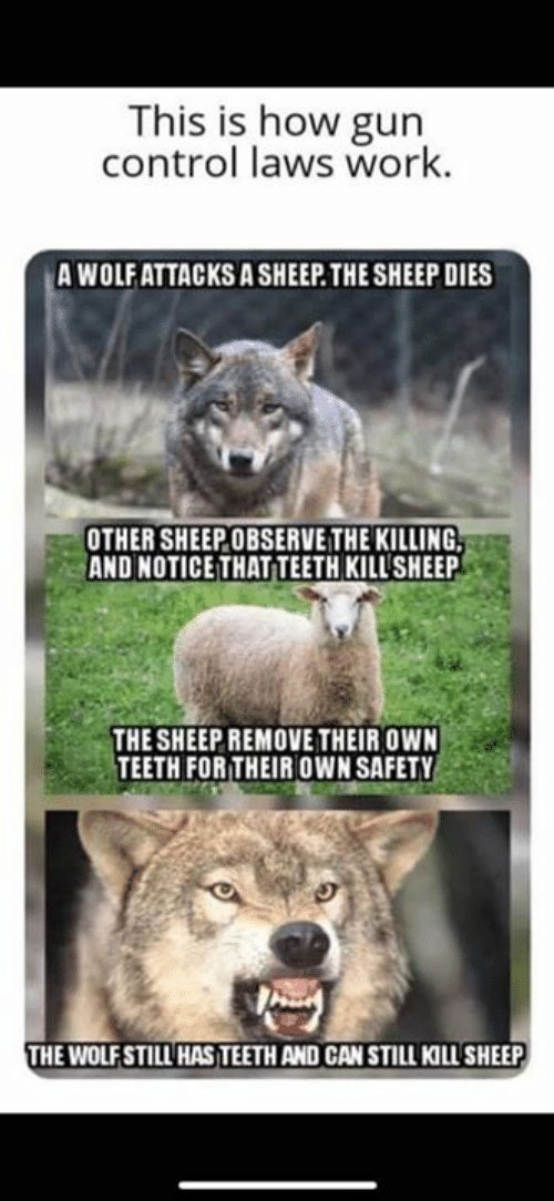 Memes, Control, and Work: This is how gun  control laws work.  A WOLFATTACKS A SHEEP.THE SHEEP DIES  OTHER SHEEPOBSERVE THE KILLING  AND NOTICE THAT TEETH KILL'SHEEP  THE SHEEP REMOVE THEIR OWN  TEETH FORTHEIR OWN SAFETY  HE WOLFSTILL HAS TEETH AND CAN STILL KILL SHEEP