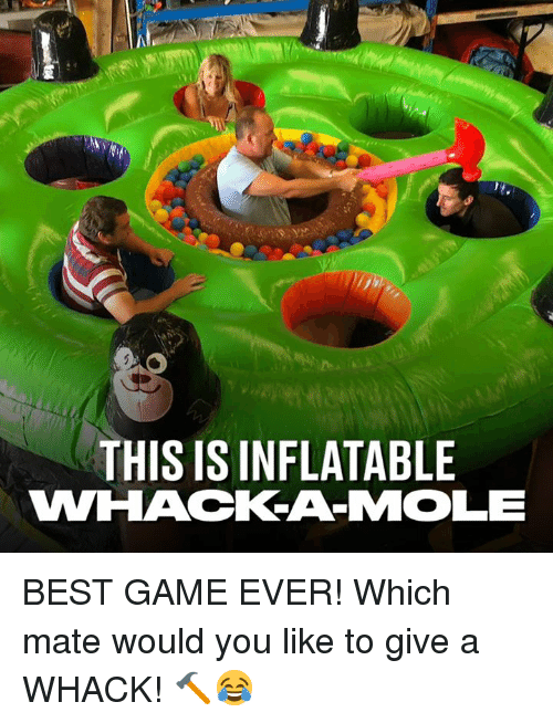Dank, Best, and Game: THIS IS INFLATABLE BEST GAME EVER! Which mate would you like to give a WHACK! 🔨😂