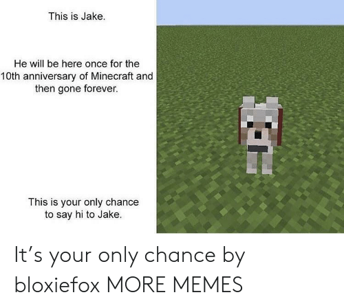 10Th Anniversary: This is Jake.  He will be here once for the  10th anniversary of Minecraft and  then gone forever.  This is your only chance  to say hi to Jake. It's your only chance by bloxiefox MORE MEMES