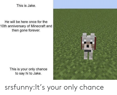 10Th Anniversary: This is Jake.  He will be here once for the  10th anniversary of Minecraft and  then gone forever.  This is your only chance  to say hi to Jake. srsfunny:It's your only chance
