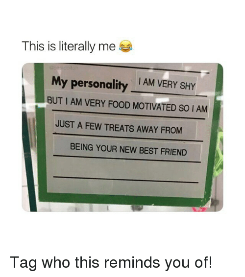Best Friend, Food, and Best: This is literally me  I AM VERY SHY  My personality  BUT I AM VERY FOOD MOTIVATED S0 IAM  JUST A FEW TREATS AWAY FROM  BEING YOUR NEW BEST FRIEND Tag who this reminds you of!