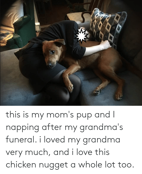 chicken nugget: this is my mom's pup and I napping after my grandma's funeral. i loved my grandma very much, and i love this chicken nugget a whole lot too.