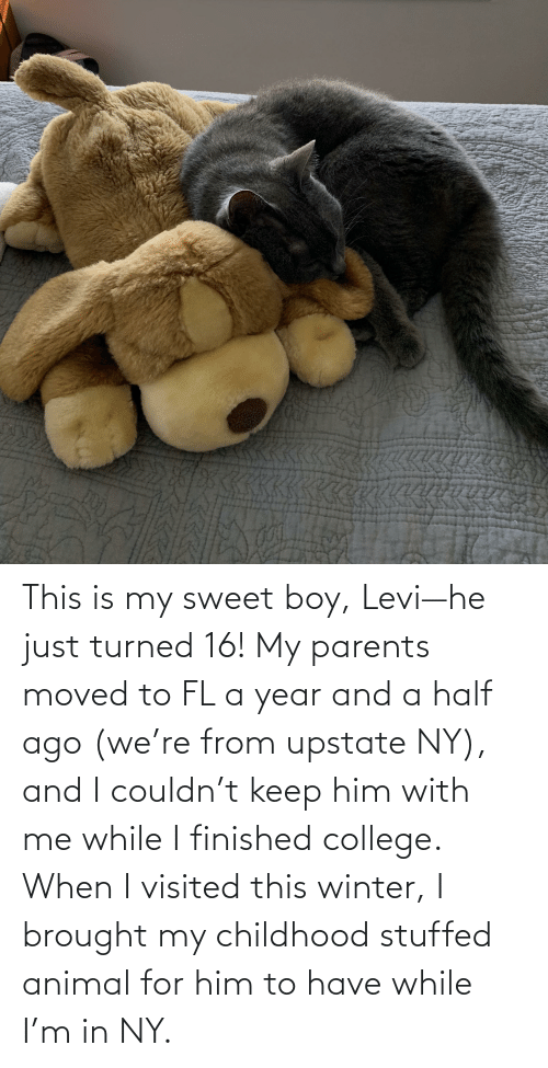 Visited: This is my sweet boy, Levi—he just turned 16! My parents moved to FL a year and a half ago (we're from upstate NY), and I couldn't keep him with me while I finished college. When I visited this winter, I brought my childhood stuffed animal for him to have while I'm in NY.