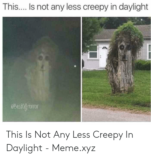 Creepy, Meme, and Daylight: This.... Is not any less creepy in daylight  ebestofforor This Is Not Any Less Creepy In Daylight - Meme.xyz