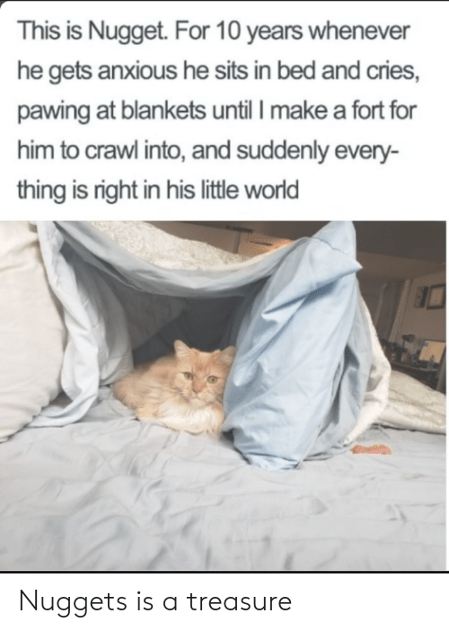 World, Crawl, and Make A: This is Nugget. For 10 years whenever  he gets anxious he sits in bed and cries,  pawing at blankets until I make a fort for  him to crawl into, and suddenly every-  thing is right in his little world Nuggets is a treasure