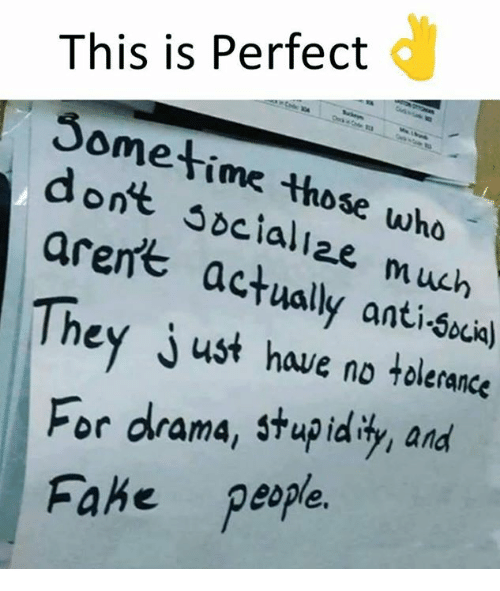 Memes, Anti, and 🤖: This is Perfect  Sometime those who  dont socaliae much  arent  actually anti-Scia)  They just have no tolerances  For drama, stupidit and  Fahe peple.