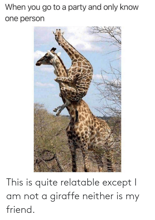 Neither: This is quite relatable except I am not a giraffe neither is my friend.