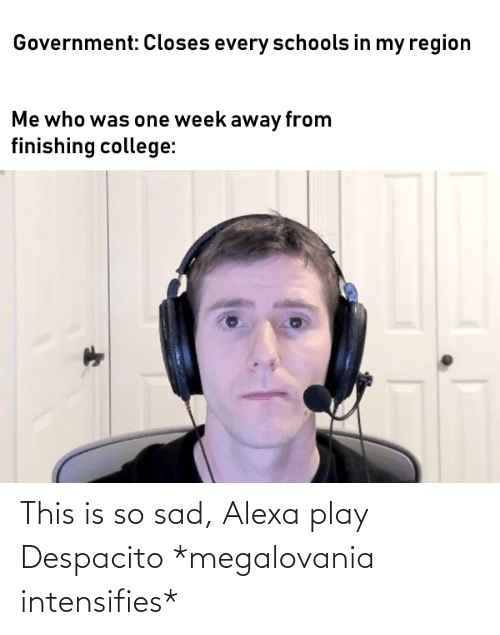 This Is So Sad Alexa Play Despacito: This is so sad, Alexa play Despacito *megalovania intensifies*