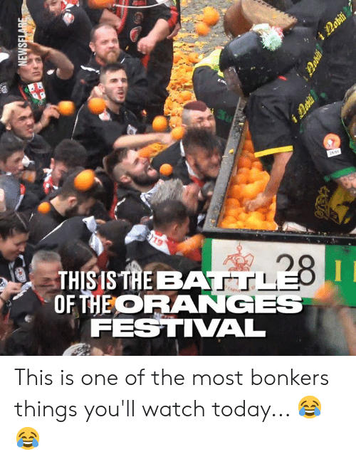baa: THIS IS TAE BAA  OHEORANGES  FESTIVAL This is one of the most bonkers things you'll watch today... 😂😂