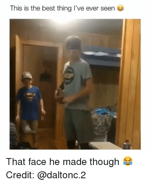Memes, Best, and 🤖: This is the best thing I've ever seen That face he made though 😂 Credit: @daltonc.2