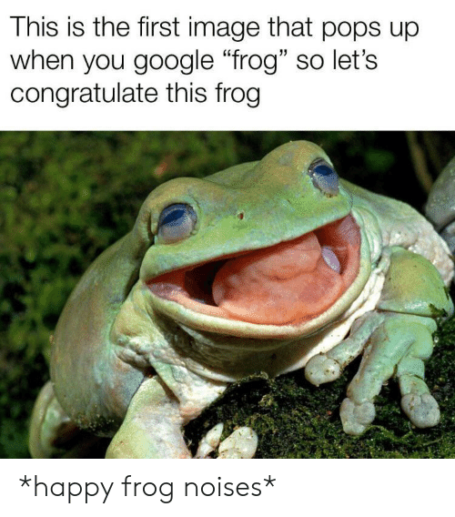 """Google, Happy, and Image: This is the first image that pops up  when you google """"frog"""" so let's  congratulate this frog *happy frog noises*"""