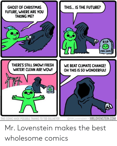 Ghost: THIS... IS THE FUTURE?  GHOST OF CHRISTMAS  FUTURE, WHERE ARE YOU  TAKING ME?  RIP  1985-2075  THERE'S STILL SNOW! FRESH  WATER! CLEAN AIR! WOW!  WE BEAT CLIMATE CHANGE!  OH THIS IS SO WONDERFUL!  @MrLovenstein MRLOVENSTEIN.COM  THIS COMIC MADE POSSIBLE THANKS TO TOD BILLMEYER Mr. Lovenstein makes the best wholesome comics