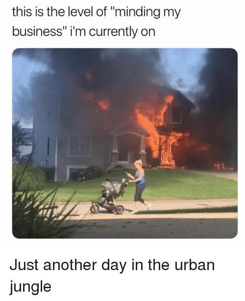"""Dank, Business, and Urban: this is the level of """"minding my  business"""" i'm currently on Just another day in the urban jungle"""