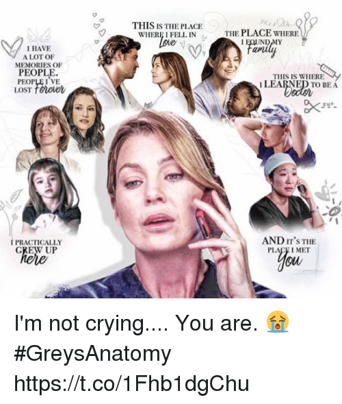 Crying, Memes, and Not Crying: THIS IS THE PLACE  WHERE I FELL IN  oue  THE PLACE WHERE  I HAVE  A LOT OF  MEMORIES OF  PEOPLE  PEOPLEIVE  LOST towee  THIS IS WHERE  I LEARNED TO BEA  IPRACTICALLY  GREW UP  AND IT'S THE  PLACE I MET I'm not crying.... You are. 😭 #GreysAnatomy https://t.co/1Fhb1dgChu