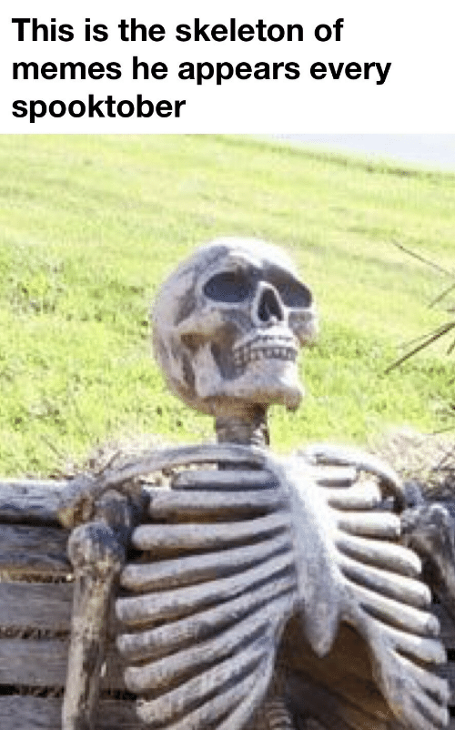 skeleton: This is the skeleton of  memes he appears every  spooktober
