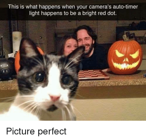Memes, 🤖, and Red: This is what happens when your camera's auto-timer  light happens to be a bright red dot. Picture perfect
