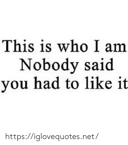 Net, Who, and You: This is who I am  Nobody said  you had to like it https://iglovequotes.net/