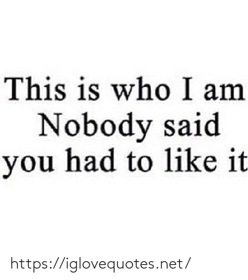 Who I: This is who I am  Nobody said  you had to like it https://iglovequotes.net/