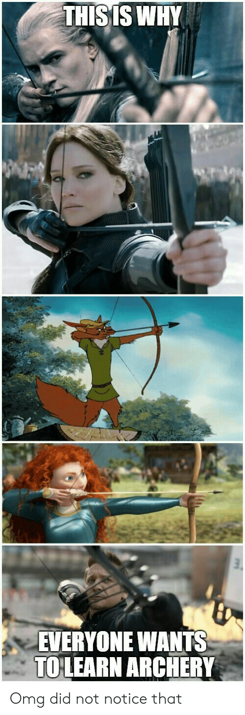 Omg, Archery, and Why: THIS IS WHY  EVERYONE WANTS  TO LEARN ARCHERY Omg did not notice that