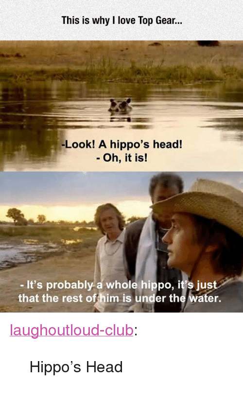 """hippos: This is why I love Top Gear.  -Look! A hippo's head!  - Oh, it is!  -It's probably a whole hippo, it's just  that the rest offhim is under the water. <p><a href=""""http://laughoutloud-club.tumblr.com/post/172128806821/hippos-head"""" class=""""tumblr_blog"""">laughoutloud-club</a>:</p>  <blockquote><p>Hippo's Head</p></blockquote>"""