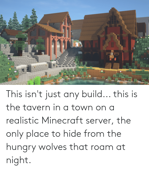 Hungry, Minecraft, and Wolves: This isn't just any build... this is the tavern in a town on a realistic Minecraft server, the only place to hide from the hungry wolves that roam at night.