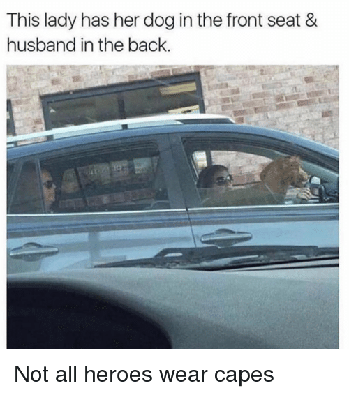 Heroes, Girl Memes, and Husband: This lady has her dog in the front seat &  husband in the back. Not all heroes wear capes
