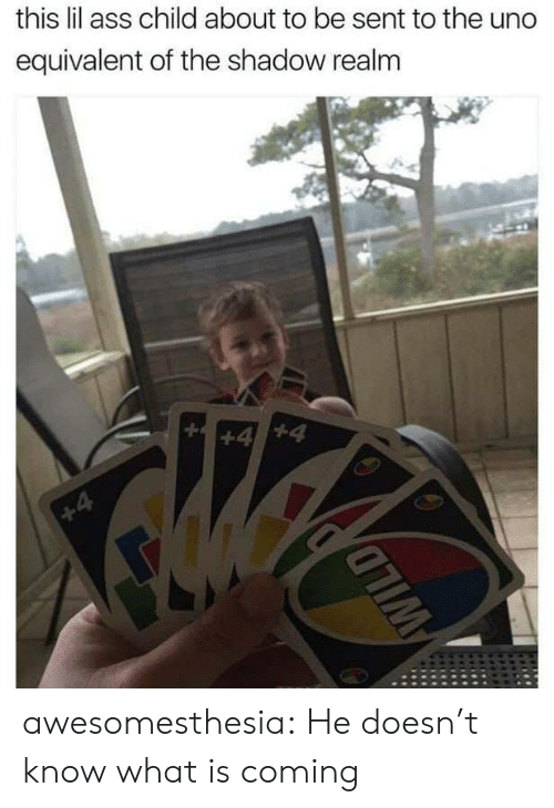 The Shadow Realm: this lil ass child about to be sent to the uno  equivalent of the shadow realm awesomesthesia:  He doesn't know what is coming