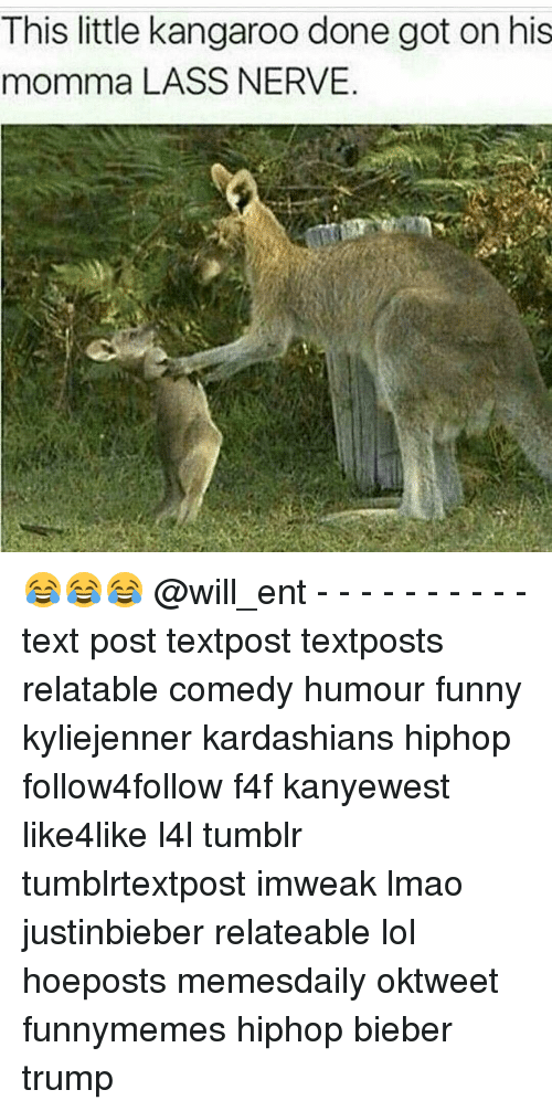 nerv: This little kangaroo done got on his  momma LASS NERVE 😂😂😂 @will_ent - - - - - - - - - - text post textpost textposts relatable comedy humour funny kyliejenner kardashians hiphop follow4follow f4f kanyewest like4like l4l tumblr tumblrtextpost imweak lmao justinbieber relateable lol hoeposts memesdaily oktweet funnymemes hiphop bieber trump