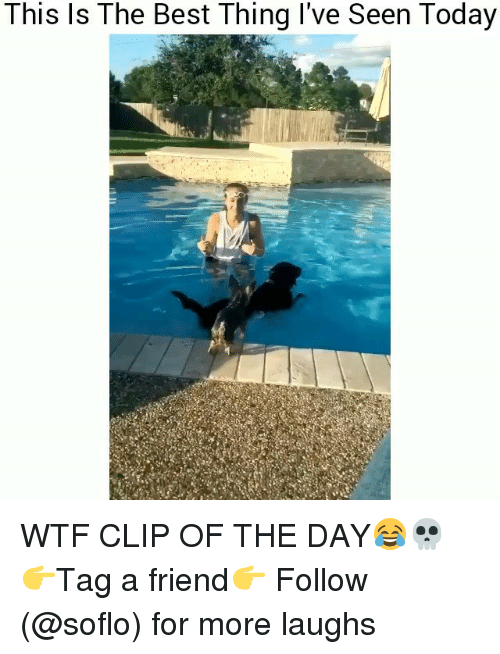 Soflo: This ls The Best Thing l've Seen Today WTF CLIP OF THE DAY😂💀 👉Tag a friend👉 Follow (@soflo) for more laughs