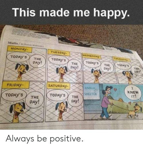 Friday, Happy, and Monday: This made me happy.  Mutts/ine  MONDAY-  TUESDAy  TODAY'S THE TODAY'S  DAY!  AL PAY!  DAy!  THE  DAY!  FRIDAY-  SATORDAY  KNEw  IT!  SHELTER  TODAY'S /  THE  DAy!  ToDAy'S Y THE  DAy! Always be positive.