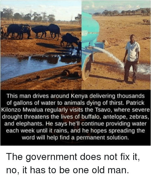 Animals, Old Man, and Buffalo: This man drives around Kenya delivering thousands  of gallons of water to animals dying of thirst. Patrick  Kilonzo Mwalua regularly visits the Tsavo, where severe  drought threatens the lives of buffalo, antelope, zebras  and elephants. He says he'll continue providing water  each week until it rains, and he hopes spreading the  word will help find a permanent solution. The government does not fix it, no, it has to be one old man.
