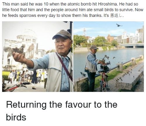 Food, Birds, and The Birds: This man said he was 10 when the atomic bomb hit Hiroshima. He had so  little food that him and the people around him ate small birds to survive. Now  he feeds sparrows every day to show them his thanks. It's恩返 Returning the favour to the birds