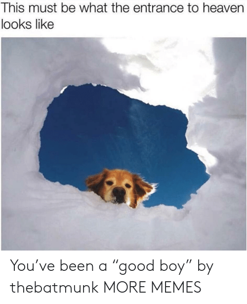 "Dank, Heaven, and Memes: This must be what the entrance to heaven  looks like You've been a ""good boy"" by thebatmunk MORE MEMES"