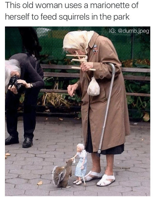 Old woman: This old woman uses a marionette of  herself to feed squirrels in the park  IG: @dumb.jpeg